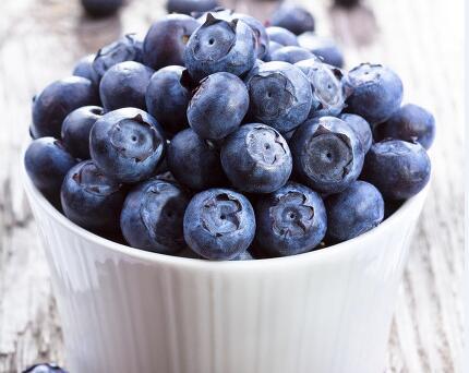 关于蓝莓小常识汇总