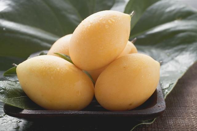 正经的枇杷芒你了解多少 颠覆你对芒果的印象