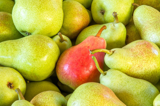 """堪称""""梨中皇后""""的香梨 营养不负它的盛名"""