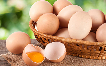 蛋类,各种蛋类介绍,蛋类营养
