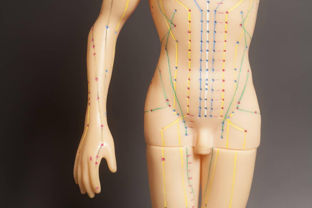 黄庭内经十二经络养生法,简单实用的锻炼方法
