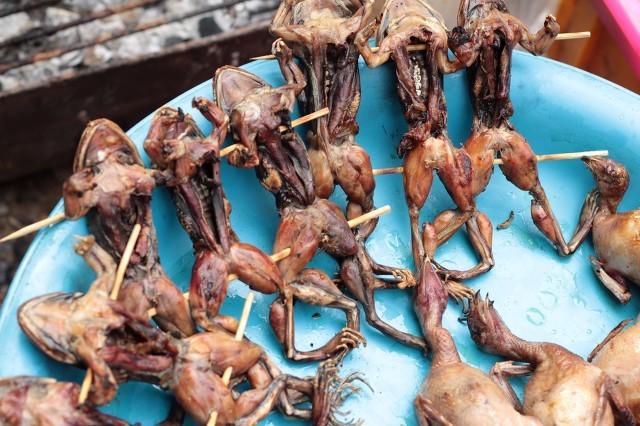 青蛙肉有哪些价值和营养 防衰补钙功效神奇