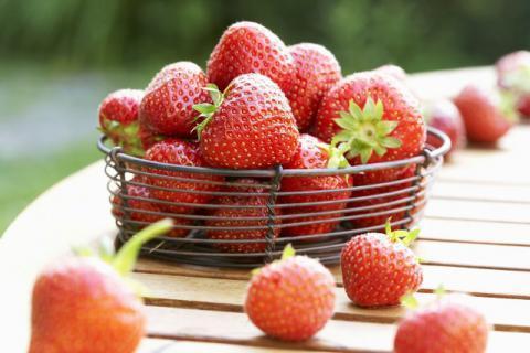 牛奶草莓真的是牛奶做肥料吗,新鲜草莓的正确选购技巧