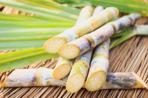 春季甘蔗能吃么 别让嘴馋成为遗憾