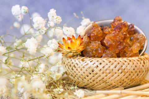 桃胶怎么样煮才能快速出胶,在家熬制美容养颜的桃胶