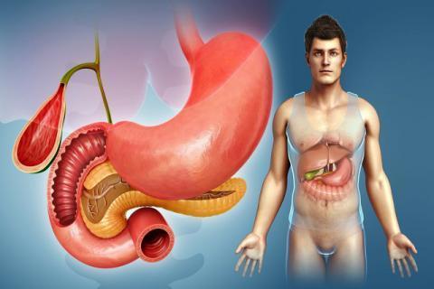 胆囊摘除后对人体有什么影响?日常应该怎么护理?