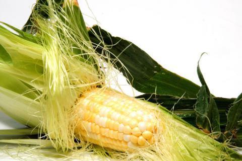 玉米须的功效有哪些,看完惊呆了
