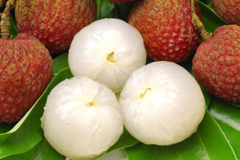 荔枝有哪些功效,它的营养价值有哪些