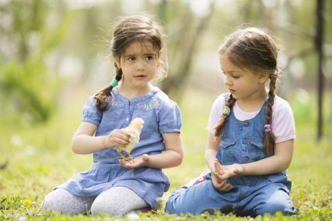在给孩子选择药物的时候,要避免药物对孩子肾脏的损害