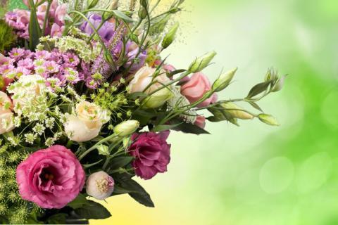 女性朋友常吃这些花朵,可以让你貌美如花