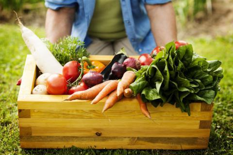 蔬菜沙拉很好吃?清洗蔬菜几个常见的误区