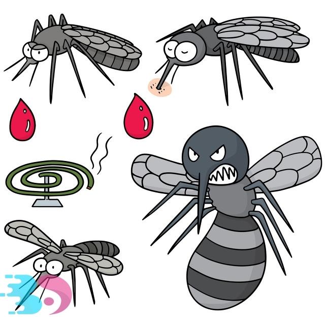 如何有效驱赶蚊子
