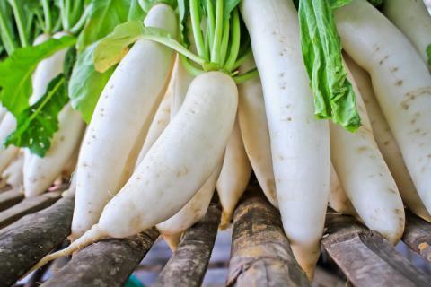 白萝卜不同部位的不同吃法