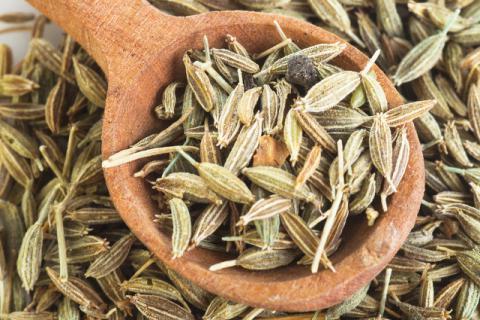 哺乳期吃茴香有什么影响?茴香有哪些食用禁忌
