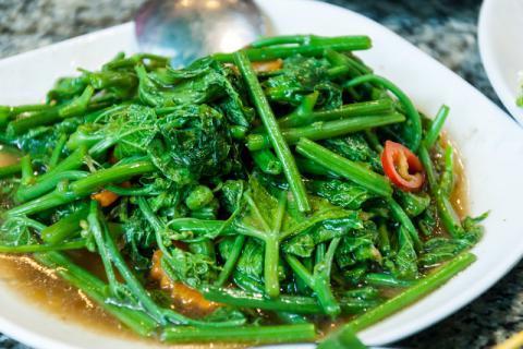 让一盘纯天然绿色青菜诱惑你的食欲
