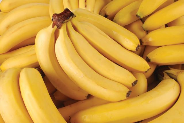 香蕉1.jpg