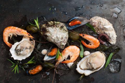河蚌虽美味,也要谨慎食用
