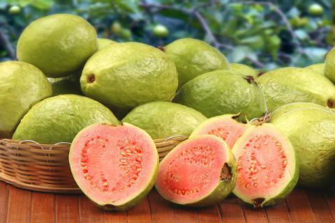 番石榴所含营养物质丰富,但要适量食用