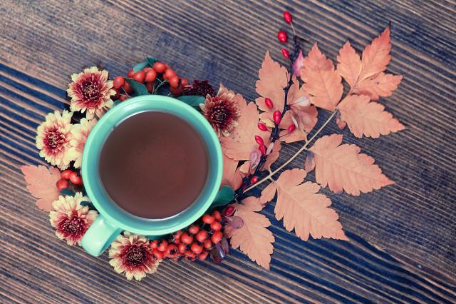 女生喝什么花茶比较好?这些花茶能补血美容