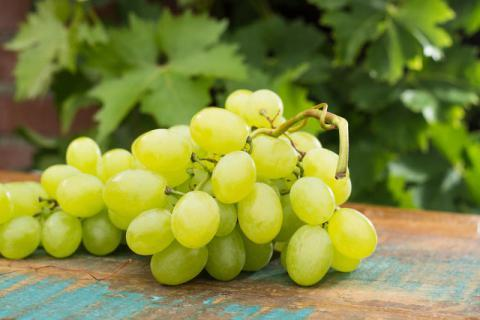 吃葡萄对身体有哪些好处,有时候吃它比吃药管用