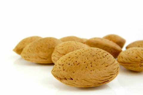 巴旦木具有很好的益智补脑的功效,食用时需要注意这些方面