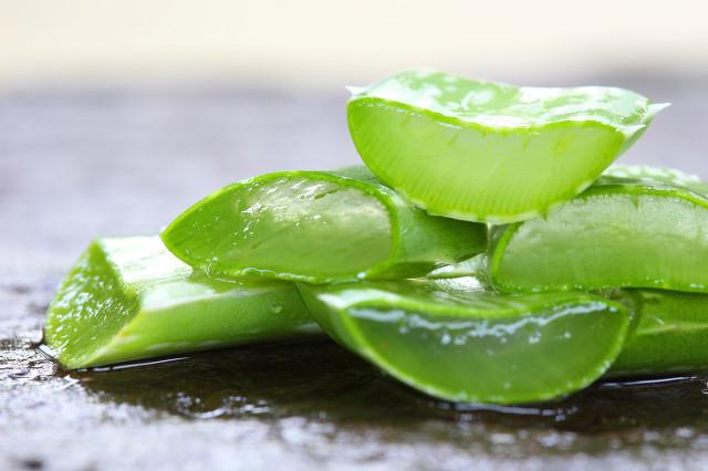芦荟养生茶也很不错,美容养颜还能调理身体