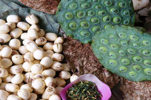 莲子的营养价值及夏天吃莲子的好处