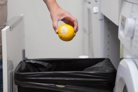 夏季厨房垃圾应该怎么处理,惹出的问题要自己解决