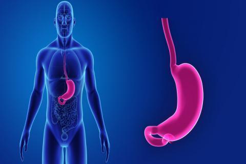 胃寒怎么办 吃什么水果可有效改善
