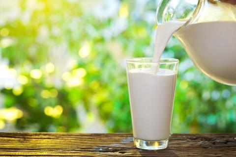 怎么喝牛奶最有营养 你喝对了吗