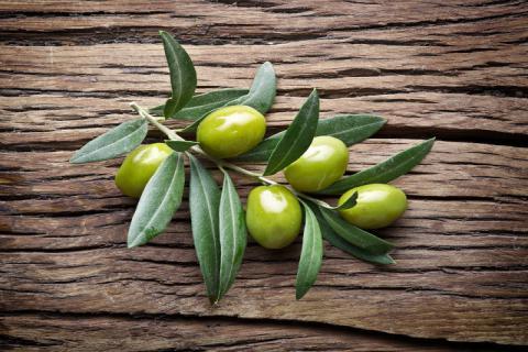 青橄榄如何食用?青橄榄的食用禁忌