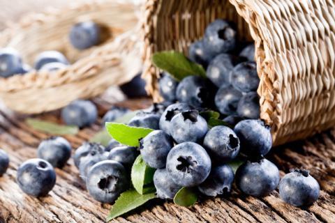 蓝莓的功效作用 降低胆固醇吃它就对了