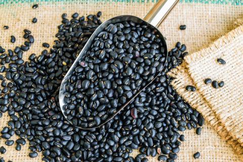 黑豆的八大养生妙用