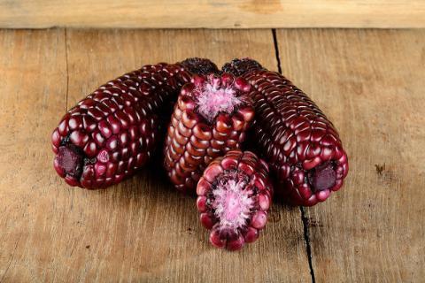 紫玉米可以放心食用吗?紫玉米的食用方法与禁忌