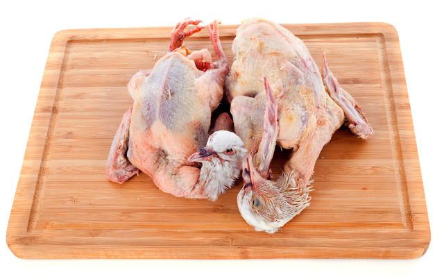 鸽子肉.jpg