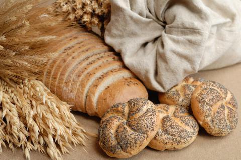 小麦发芽以后还能健康食用,食用时有哪些注意事项