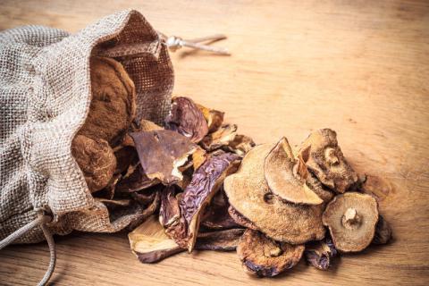 榛蘑的食用功效以及方法有哪些,榛蘑的食用禁忌有哪些