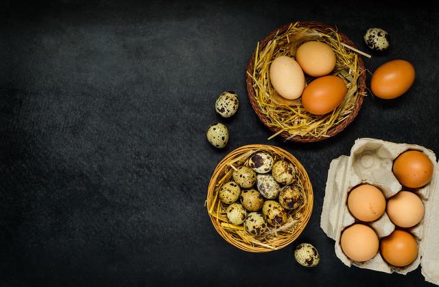 野生鹌鹑蛋要比普通鹌鹑蛋更有营养吗