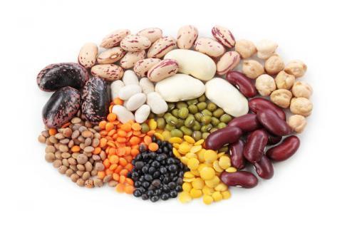 扁豆可以和蘑菇搭配食用吗,扁豆适合和含有草酸的食物搭配食用吗
