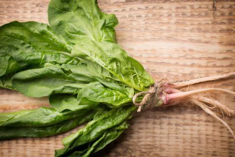 菠菜和什么可以同食,菠菜和它们同食竟然还有这么多好处!