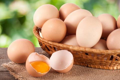 土鸡蛋大的好还是小的好