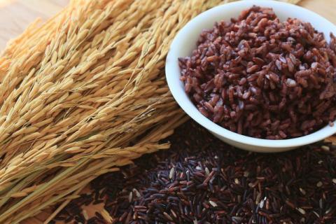 黑米可以用来蒸饭吗,食用黑米饭对身体的好处多多