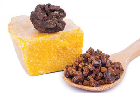 天然纯蜂胶的提取方法,食用蜂胶对身体的滋补作用极佳