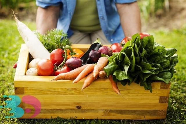 蔬菜 1.jpg
