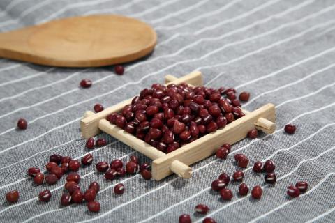 红豆杉的果实有哪一些功效与作用呢?