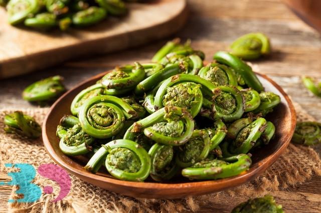 适合春季食用的蔬菜种类推荐