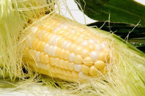 玉米须可以用来泡脚吗