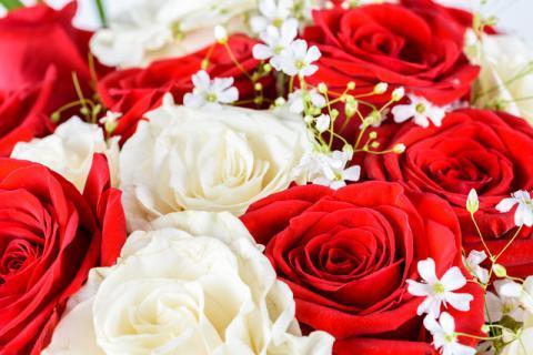 情人节收到的玫瑰花不要丢,玫瑰花瓣的功效与作用告诉你!
