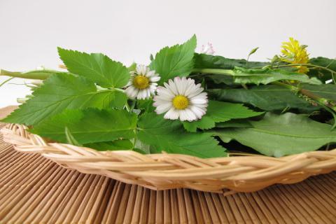 春分的传统食物有哪些,你知道是哪些食物脱颖而出吗