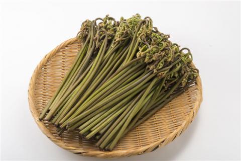 干蕨菜怎么吃好吃?这都是什么神仙吃法啊!